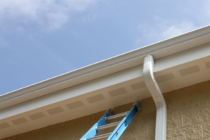 Gutter cleaning services in Sarasota, FL